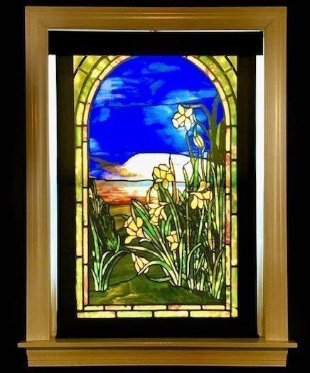 Tiffany Shades Daffodils